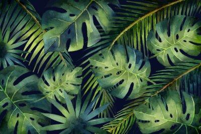 Papiers peints Feuilles tropicales de bannière vecteur aquarelle et branches isolées sur fond sombre.