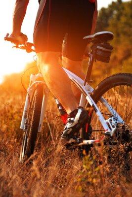 Papiers peints Fin, haut, arrière, vue, homme, spining, vélo, pédales