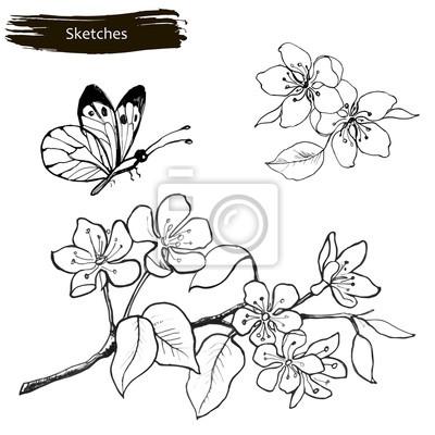 Papiers Peints Fixez Le Dessin à La Main Des Fleurs De Printemps Une Branche