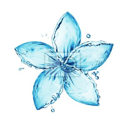 Papiers peints fleur faite de projections d'eau