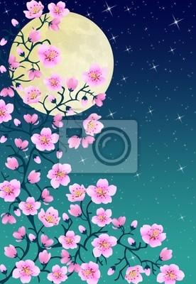 Fleurs De Cerisier Japonais Par Nuit Papier Peint Papiers Peints
