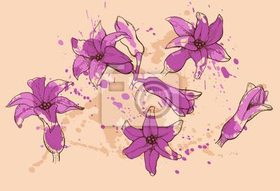 fleurs de jacinthe de couleur violet