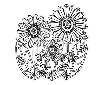 Fleurs Dessinees A La Main Croquis Pour Livre De Coloriage Adulte