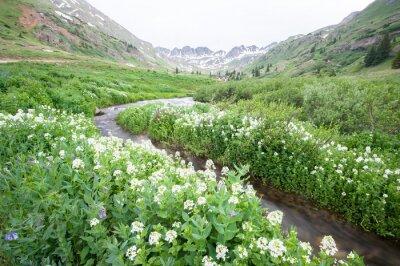 Papiers peints Fleurs et montagne