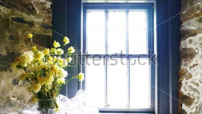 Papiers peints Fleurs près de la fenêtre