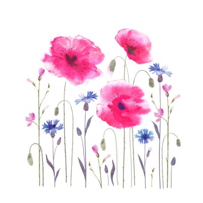 Papiers peints Floral glade with poppies and cornflowers.