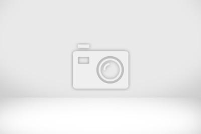 Papiers peints Fond blanc abstrait avec une lumière blanche et une ombre grise: un intérieur léger vide avec un espace de copie pour un projet de fond de studio créatif.