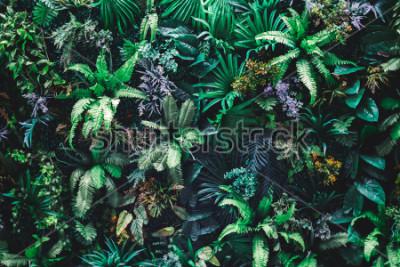 Papiers peints Fond de belle nature de jardin vertical avec feuille verte tropicale