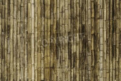 Papiers peints Fond de clôture en bambou