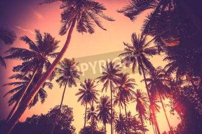 Papiers peints Fond de vacances tonifié vintage composé de silhouettes de palmiers au coucher du soleil.