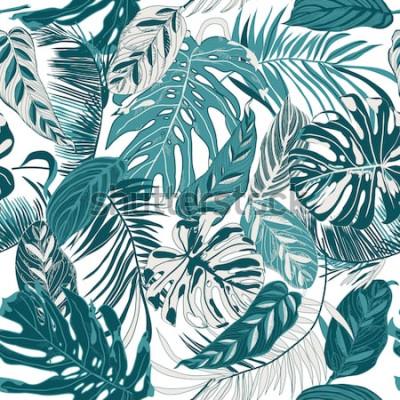 Papiers peints fond transparent avec feuilles tropiques