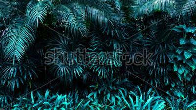 Papiers peints forêt de feuilles tropicales lueur dans le fond sombre. Contraste élevé.