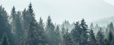 Papiers peints Forêt de pins arbres stylisés silhouette bannière fond de bannière