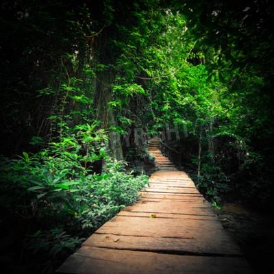 Papiers peints Forêt profonde de la jungle fantastique dans les couleurs noires. Voie routière en bois à travers des arbres tropicaux. Paysage conceptuel pour un fond mystérieux