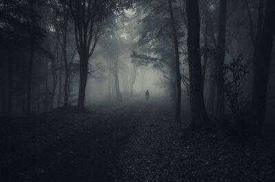 Papiers peints forêt sombre avec l'homme effrayant de marcher sur un chemin