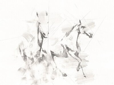 Papiers peints freehand horse head pencil drawing