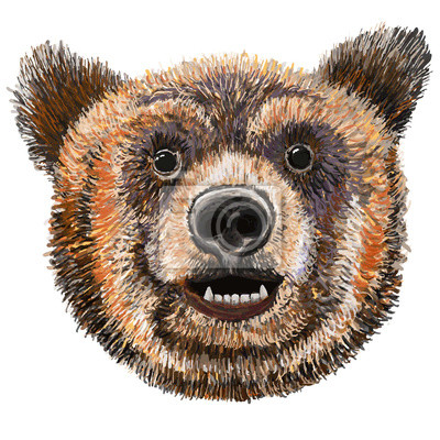 Gardez à l'expression de sourire, Grizzly, ours de Kodiak isolé Vector