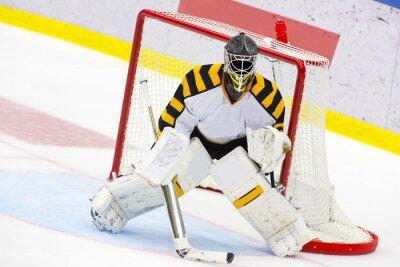 Papiers peints Gardien de but de hockey sur glace