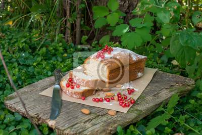 Gâteau aux fruits avec groseille rouge dans le jardin
