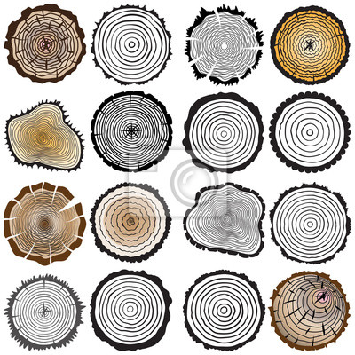 Géométrique abstrait fond cercle gris avec des ombres, en jeu d'anneaux, illustration, eps10
