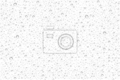 Papiers peints Gouttes d'eau réalistes vecteur condensé