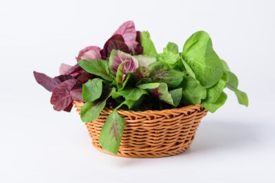 Green and red Thai spinach leaf or edible amaranth (Asian plant) in basket on white background