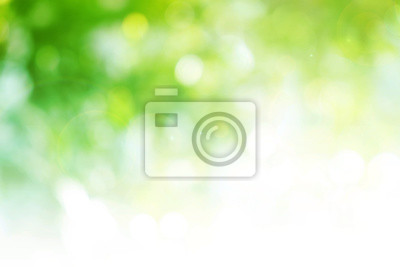 Papiers peints Green background for people who want to use graphics advertising.