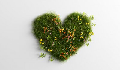 Papiers peints Green grass with spring summer flowers in heart shape