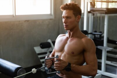 Papiers peints Handsome Muscular Fitness man in the gym, training hard and pulling weights in seated cable row machine, Athlete makes low cable pulley row seated in the gym, Bodybuilder, Sport fitness concept