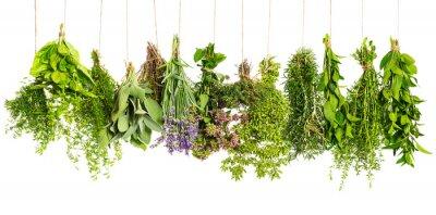 Papiers peints herbes suspendu isolé sur fond blanc. ingrédients alimentaires