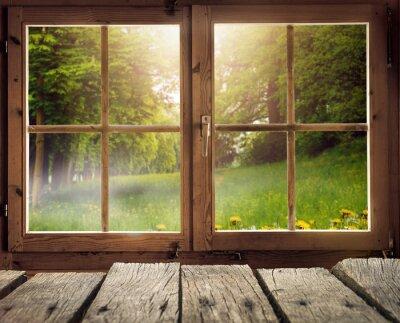 Papiers peints Holzhütte mit Ausblick auf eine Waldlichung im Frühling / Frühsommer bei Sonnenschein