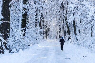 Papiers peints Homme courant dans la forêt en hiver