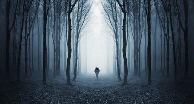 Papiers peints homme dans une forêt sombre