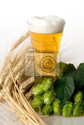 hopfen mit Bier