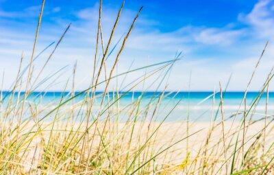 Papiers peints Idyllic beach break de repos