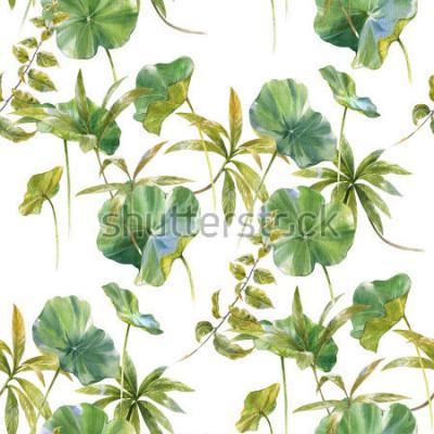Papiers peints Illustration aquarelle de feuille, modèle sans couture sur fond blanc