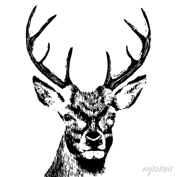 Papiers peints illustration d'une tête de cerf, grunge, silhouette isolé sur blanc