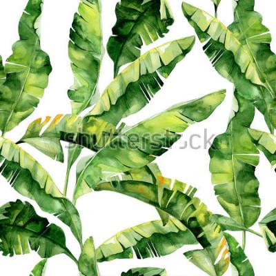 Papiers peints Illustration de feuilles tropicales aquarelles transparentes, jungle dense. Motif with tropish summer pattern with used paper background, paper packaging, textile, conception de pa
