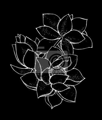 Papiers Peints Illustration De La Fleur De Lotus Dans Le Style Motif De Lotus