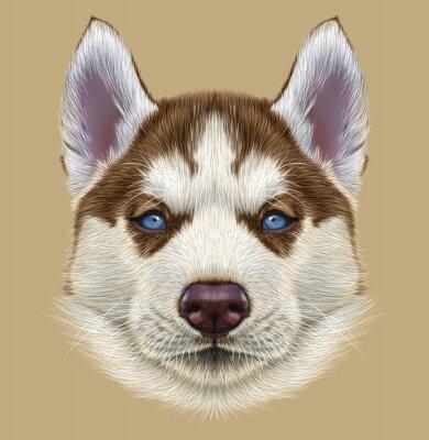 Papiers peints Illustrative Portrait de chiot Husky. Mignon, portrait, jeune, cuivre, rouge, bicolore, chien, pâle, bleu, yeux