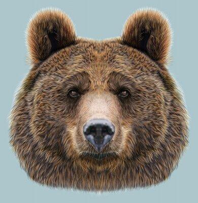 Papiers peints Illustré, portrait, ours, bleu, fond