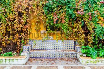 Papiers peints image pittoresque d'un banc avec des carreaux traditionnels devant un mur recouvert de vigne