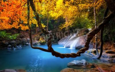 Papiers peints Incroyable beauté de la nature asiatique. Tropical, chute eau, coule, par, dense, jungle, forêt, tombe, sauvage, Étang