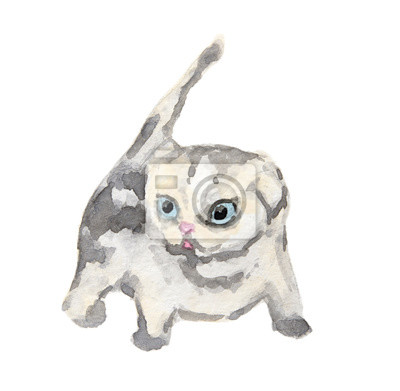 Isolé, aquarelle, chat, séance, blanc, fond