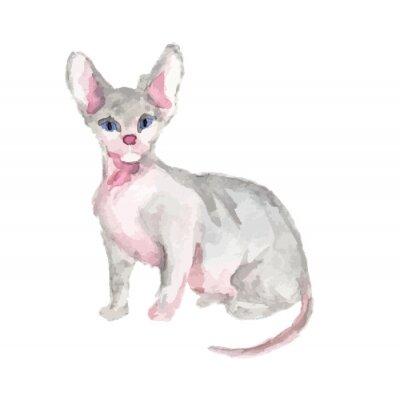 Isolé, aquarelle, chat, séance, blanc, fond sphinx
