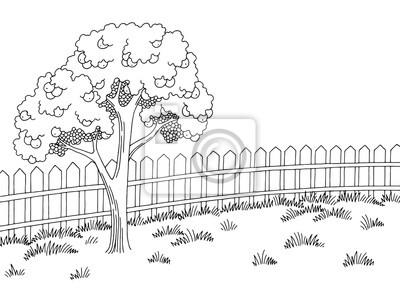 Papiers Peints Jardin Graphique Noir Blanc Paysage Apple Tree Croquis Illustration