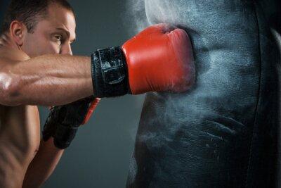Papiers peints Jeune boxeur de boxe