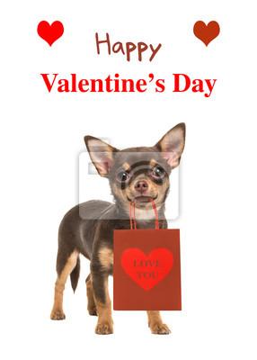 """Joli chihuahua chien debout et face à la caméra isolé sur un fond blanc tenant un sac cadeau avec le texte """"Happy Valentine's Day"""""""
