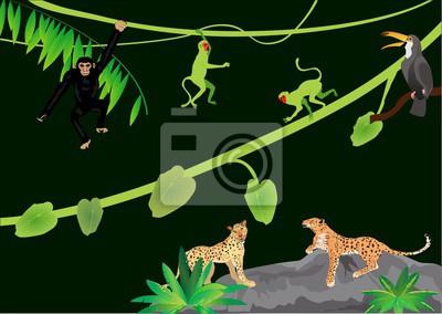 Jungle Animaux Illustration Vectorielle Leopards Jaguar Singes