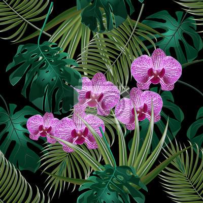 Jungle Feuille Verte Tropicale Fleurs Dorchidees Et Feuilles